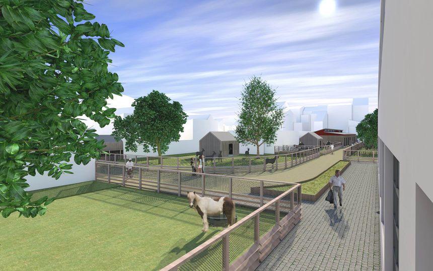Des animations et des actions de médiation autour des animaux seront proposées au sein de la ferme urbaine de Calais.