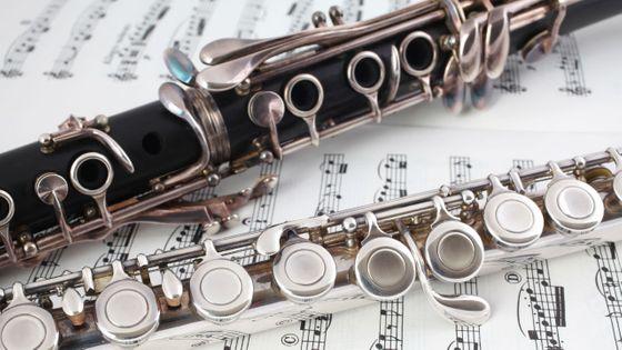 22 instruments ont été volés à l'école de musique Mélodia, en Moselle