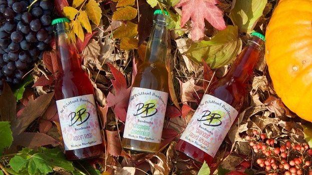 les premières bouteilles de BB Kombutcha