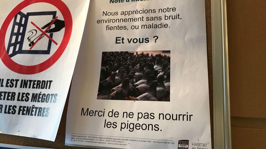 Dans certains halls de résidences, les affiches ont été arrachées
