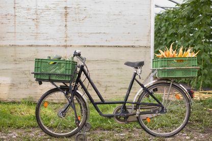 L'association Biocycle prend en charge les invendus des professionnels de l'alimentation : commerces, restaurants, cantines… Une fois les dons collectés, ils les livrent à vélo pour les redistribuer auprès des associations caritatives.
