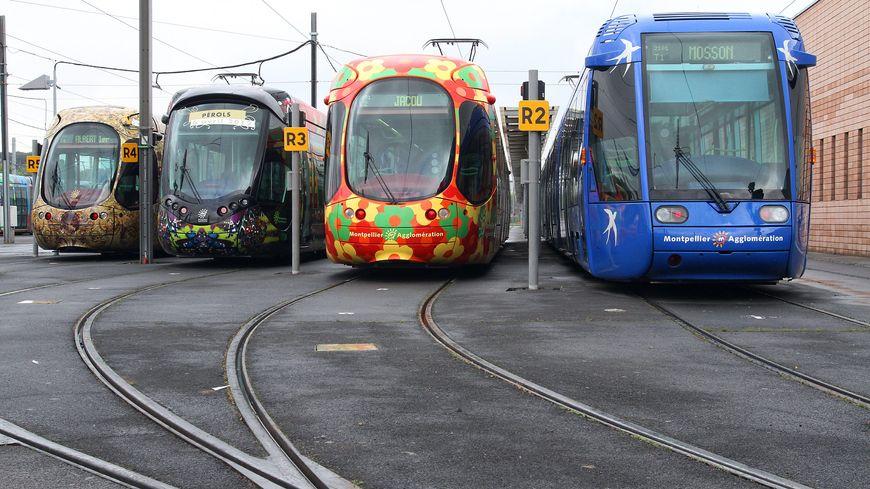 Les 4 tramways de Montpellier