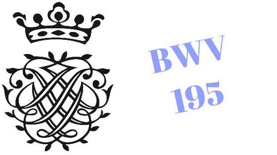 BWV 195