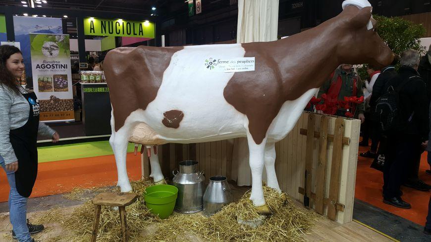 Noisette, la fausse vache de la Ferme des Peupliers dans l'Eure.