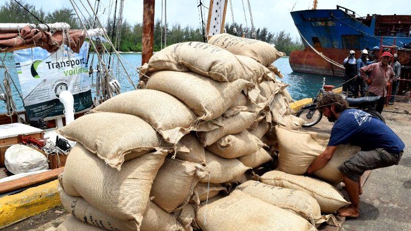Un chargement de café par l'entreprise TOWT, sur le voilier Lun2