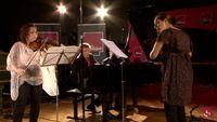 Berlioz et Martinu par La Symphonie de Poche et l'Ensemble Calliopée