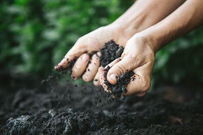 La connaissance des sols