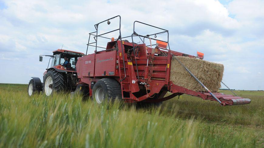 Un champ du Loiret, l'un des départements perdants de cette nouvelle carte agricole