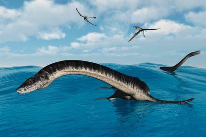 Plésiosaures dans leur habitat marin.