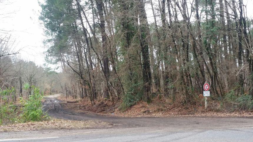 Les corps du père et du fils ont été retrouvé par des chasseurs sur ce chemin forestier