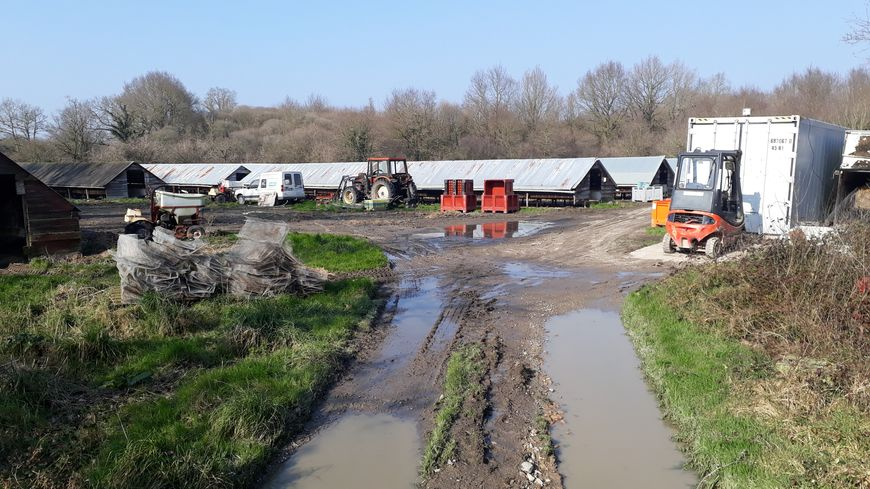 L'élevage la Visonnière du Bois, à Landeronde