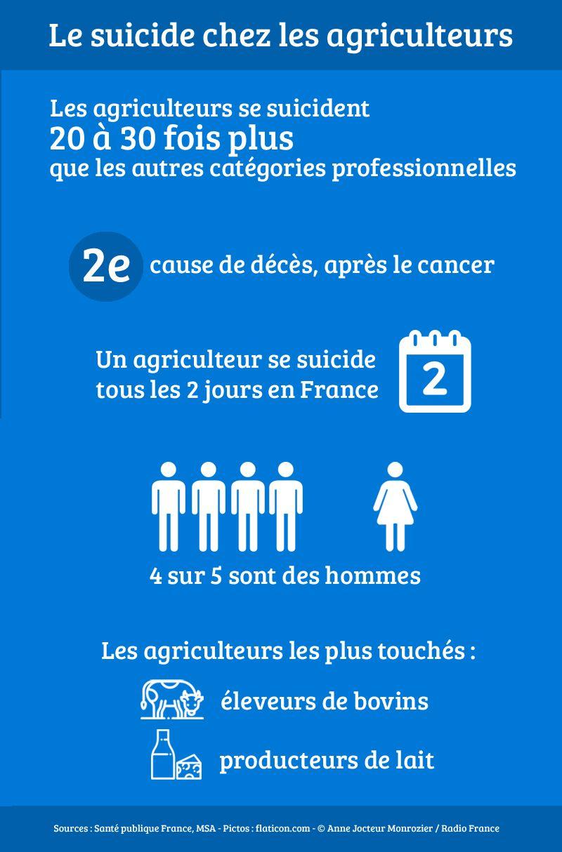"""Résultat de recherche d'images pour """"suicide des paysans en france"""""""