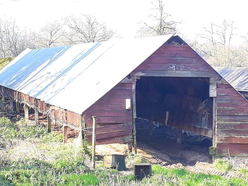 L'un des bâtiments de l'élevage de visons de Landeronde