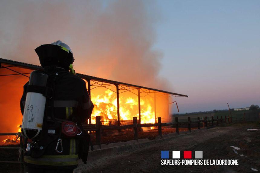 Une quizaine de pompiers sont intervenus pour éteindre le feu