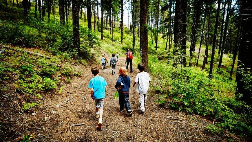 Group of young kids walking on trail in forest