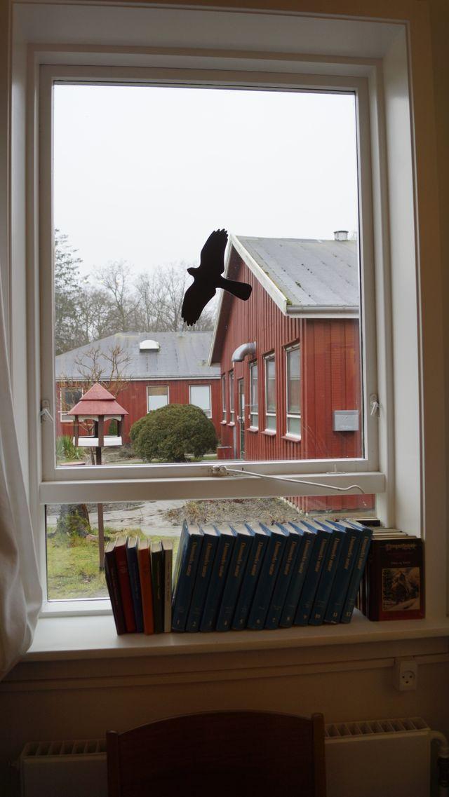 Dans la prison de Horserød, pas de barreaux aux fenêtres des cellules