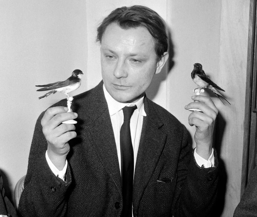 """Roland Dubillard, lauréat du prix des """"U"""" pour sa pièce """"Naïves Hirondelles"""", tenant deux hirondelles, 9 janvier 1962."""