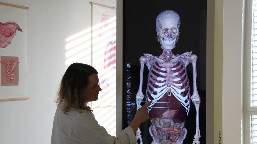 Marie Gavid, enseignante-chercheur en anatomie et l'Anat 3D