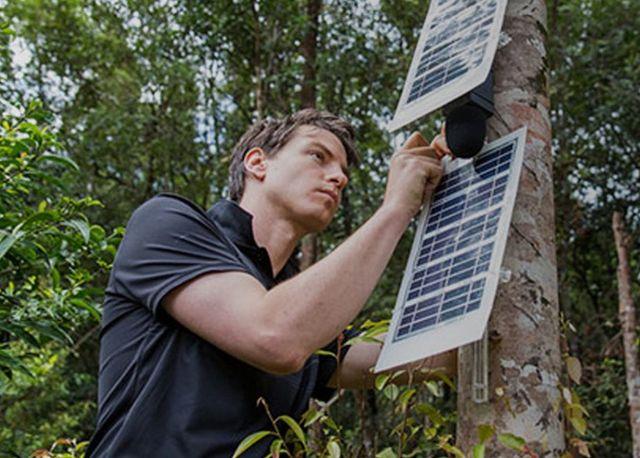 Les smartphones positionnés sur les arbres sont alimentés par des panneaux solaires