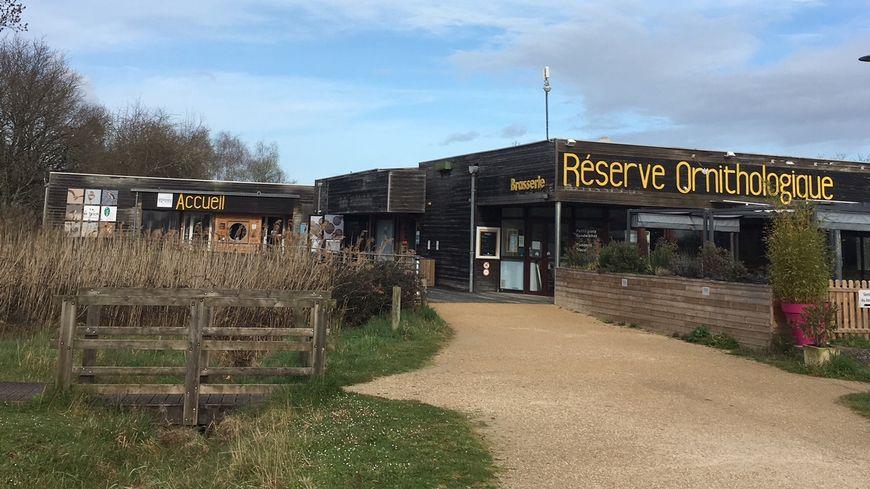Bienvenue à la réserve ornithologique du Teich