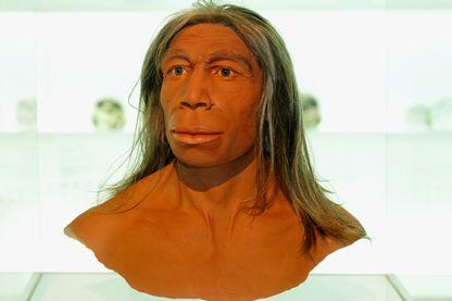 Homme de Néandertal au Muséum d'histoire naturelle en Suisse