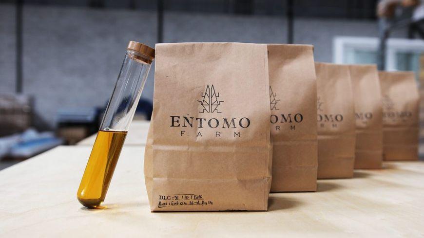 Les insectes sont transformés par Entomo Farm en farine, en huile et en engrais