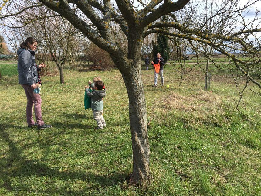 Les enfants ont retourné la ferme pour trouver leurs précieux oeufs en plastique.