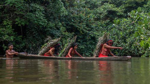 Épisode 4 : De l'Amazone au Whanganui, l'identité sacrée des peuples