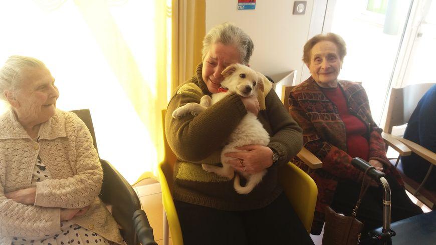 Les résidents de la maison de retraite de Pézilla-la-Rivière ont accueilli Oscar comme une star.