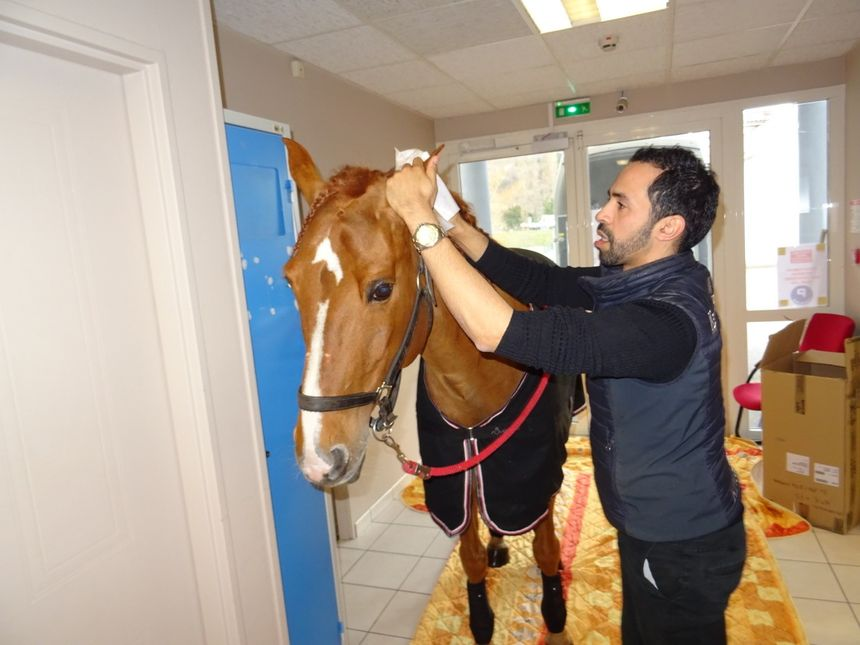 Hassen Bouchakour prépare Peyo avant son entrée dans la maison de retraite de Sassenage