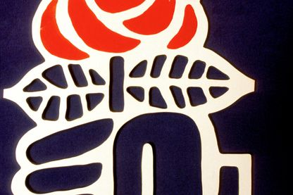 La rose socialiste