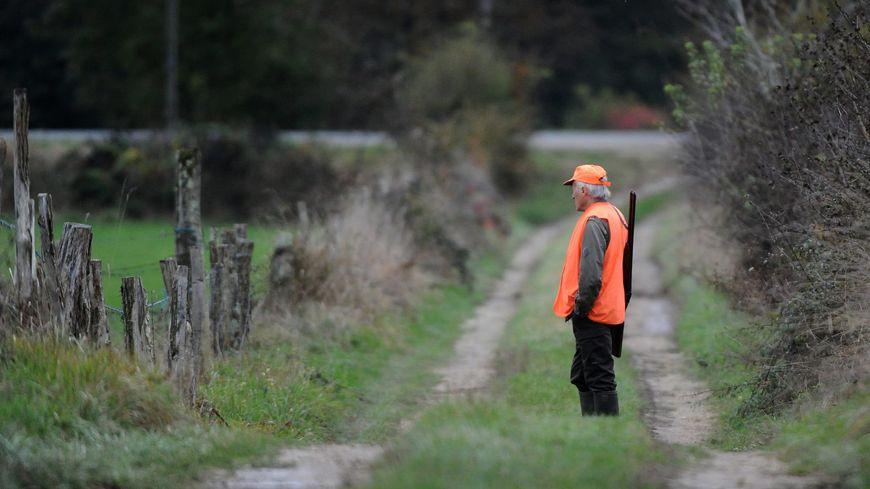 La préfecture d'Ille-et-Vilaine a prolongé d'un mois la chasse aux sangliers.
