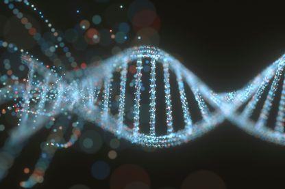de l'ADN à l'Homme - entrelacements et biologie évolutive