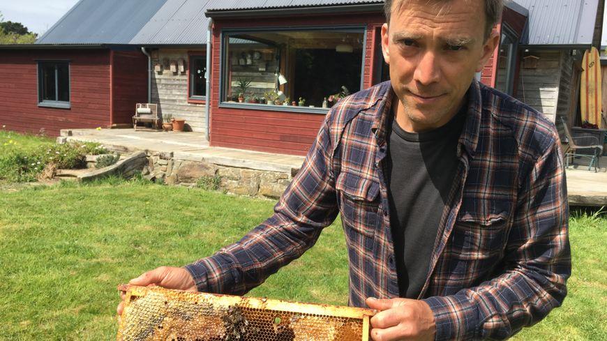 Sven Niel montre l'un de ces cadres, dans une ruche, qui ne vas donner de miel cette année.