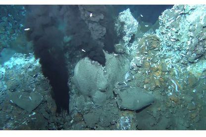 Mission Bicose à 3600 mètres de profondeur
