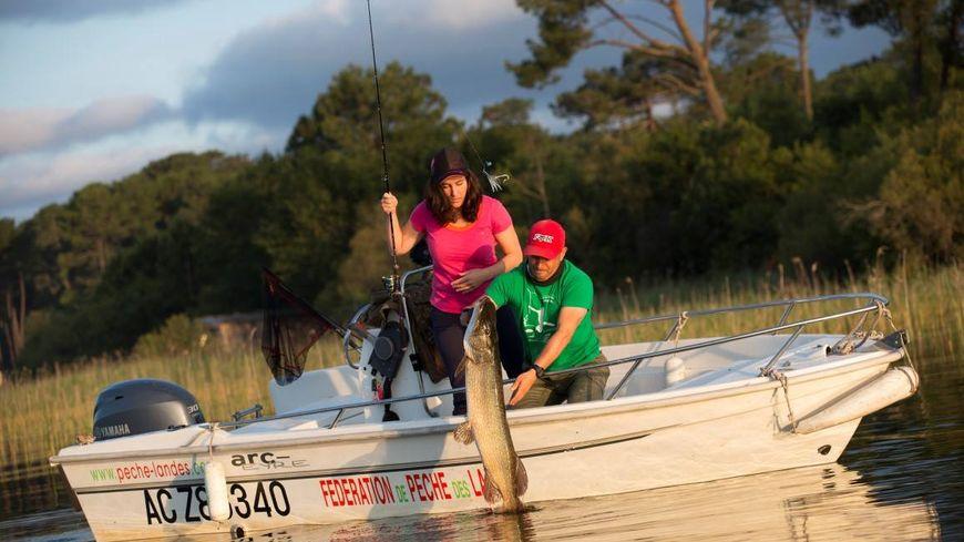 Lac naturels, retenues collinaires, rivières... Les Landes regorgent de bons coins pour la pêche aux carnassiers