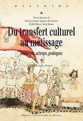 Du transfert culturel au métissage