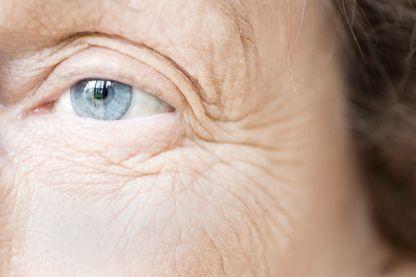 La biologie du vieillissement