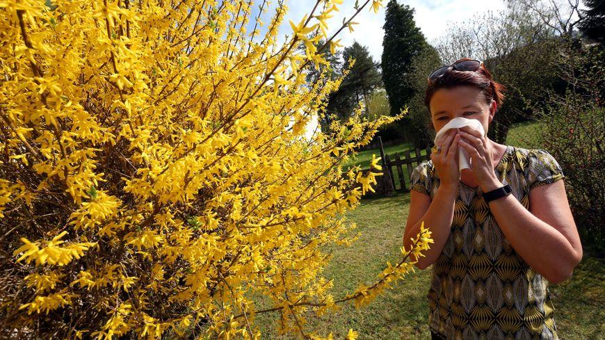La Franche-Comté est placée en risque maximal d'allergies aux pollens.