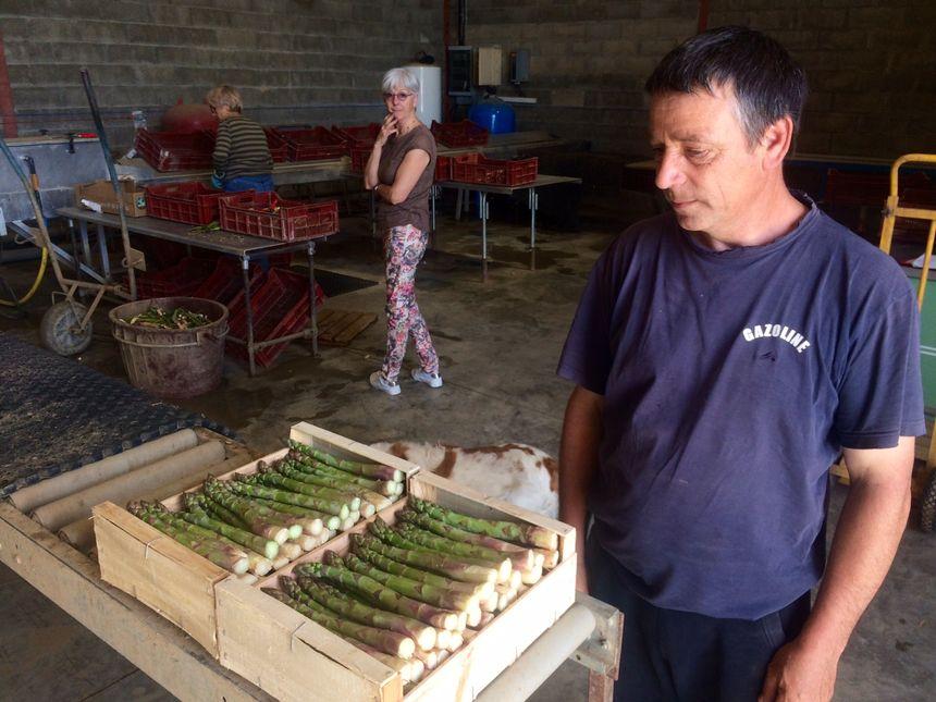 Eric Imbert cultive quatre hectares d'asperges qu'il exporte à Paris et Lyon, le reste étant vendu directement sur son exploitation.