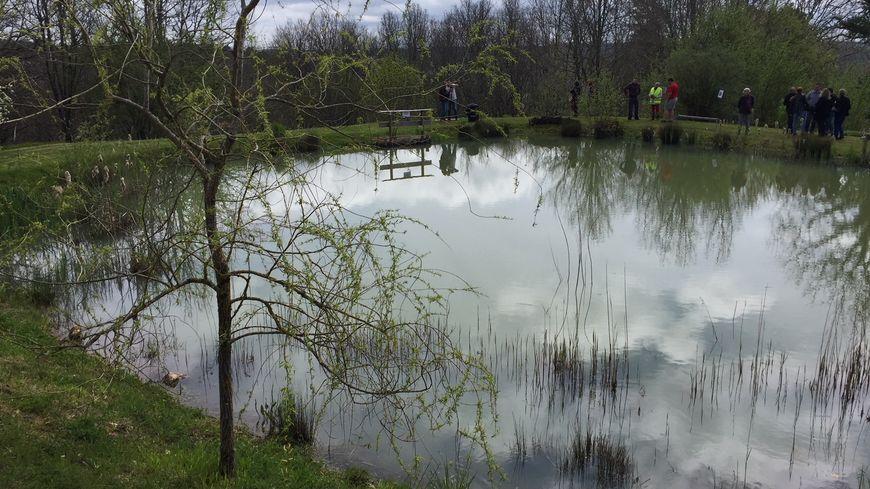 La fameuse mare située au fond du jardin des époux Pecheras à Grignols, près de Saint-Astier