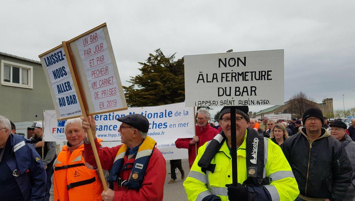 Cherbourg : plus de 700 manifestants contre l'interdiction de la pêche au  bar