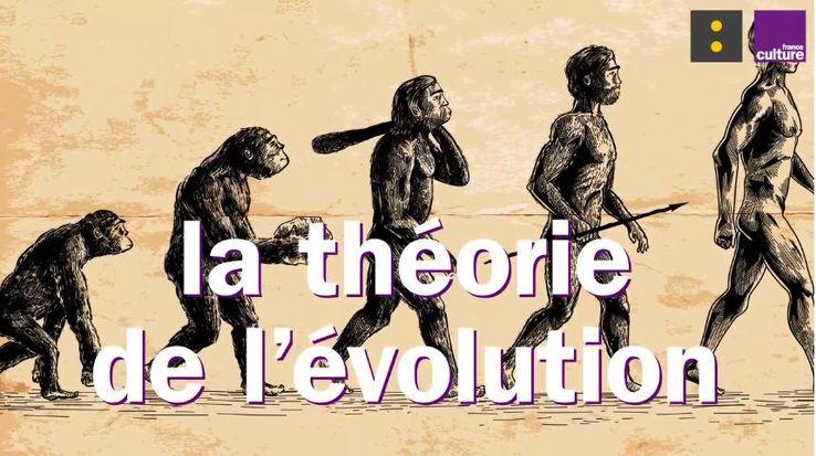 Les Idées claires : peut-on nier la théorie de l'évolution?