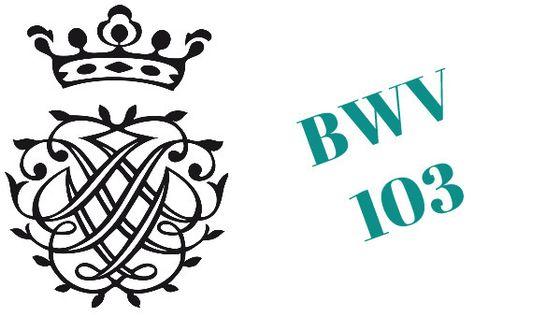 Cantate BWV 103 « Ihr werdet weinen und heulen » (Vous allez gémir et vous lamenter) 1725