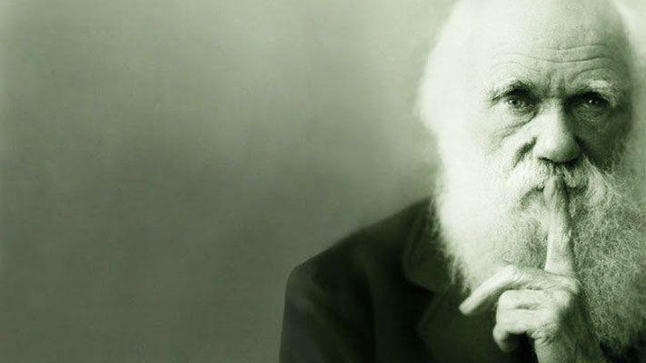 """""""On appelle évolution l'idée que les espèces se sont transformées au cours du temps. Darwin, lui, parle de descendance avec modification."""" Thierry Hoquet"""
