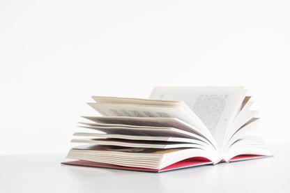 Qui gagnera le prix du Livre Inter cette année ?