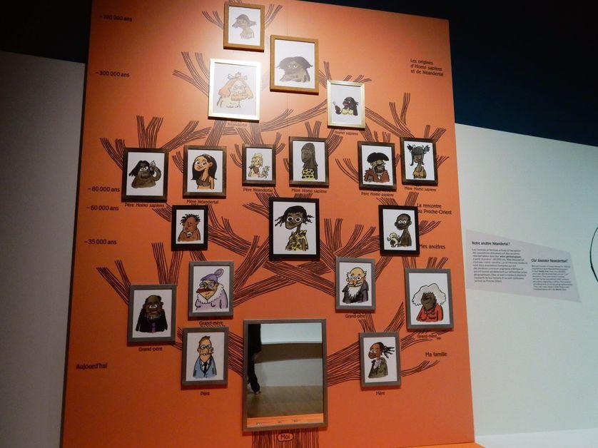 Un des panneaux de cette exposition sur l'homme de Néandertal