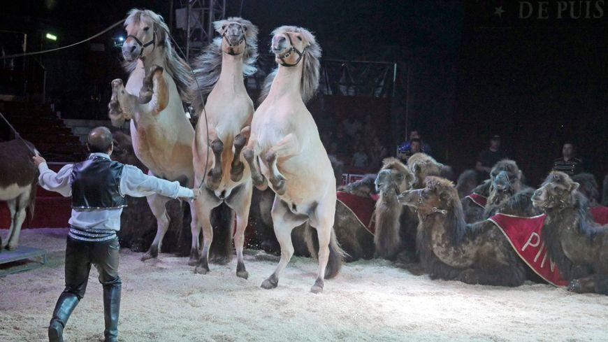 Le cirque Pinder à Lyon.