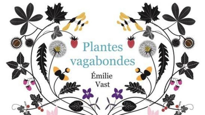 livre pour les enfants plantes vagabondes emilie vast ditions m mo. Black Bedroom Furniture Sets. Home Design Ideas