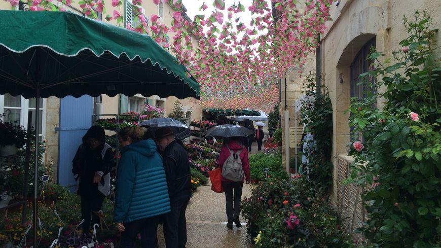 Des milliers de fleurs sont présentées aux floralies de Saint-Jean-de-Côle